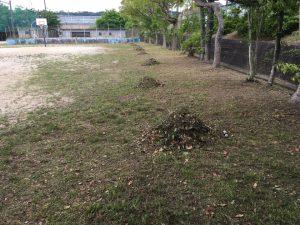 (緑の会)が、桜台小学校の草刈りを行いました。